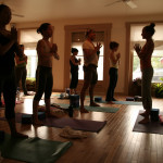 Yoga classes by the top yoga instructors in the country