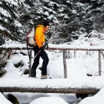 snow shoeing near good commons